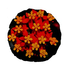 Orange And Red Weed Standard 15  Premium Flano Round Cushions by timelessartoncanvas