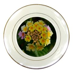 Colorful Flowers Porcelain Plates by timelessartoncanvas