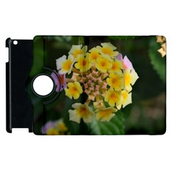Colorful Flowers Apple Ipad 3/4 Flip 360 Case by timelessartoncanvas