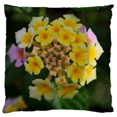 Colorful Flowers Standard Flano Cushion Cases (one Side)  by timelessartoncanvas