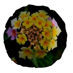 Colorful Flowers Large 18  Premium Flano Round Cushions by timelessartoncanvas
