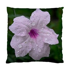 Pink Purple Flowers Standard Cushion Case (one Side)  by timelessartoncanvas