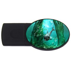 Wonderful Dolphin Usb Flash Drive Oval (2 Gb)  by FantasyWorld7