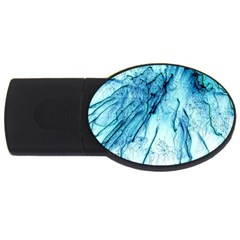 Special Fireworks, Aqua Usb Flash Drive Oval (4 Gb)  by ImpressiveMoments