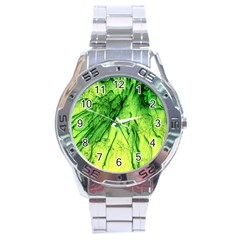 Special Fireworks, Green Stainless Steel Men s Watch