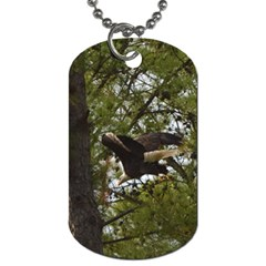 Bald Eagle Dog Tag (one Side) by timelessartoncanvas