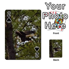 Bald Eagle Playing Cards 54 Designs  by timelessartoncanvas