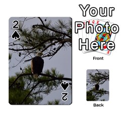 Bald Eagle 4 Playing Cards 54 Designs  by timelessartoncanvas