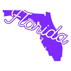 Florida Home State Pride Birthday Cake 3d Greeting Card (7x5)  by CraftyLittleNodes