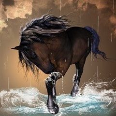 Beautiful Horse With Water Splash Magic Photo Cubes by FantasyWorld7