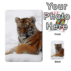 Tiger 2015 0101 Multi-purpose Cards (Rectangle)  by JAMFoto