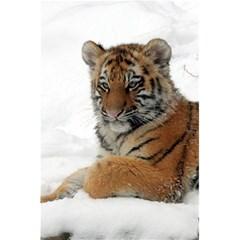 Tiger 2015 0101 5 5  X 8 5  Notebooks by JAMFoto