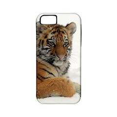 Tiger 2015 0102 Apple Iphone 5 Classic Hardshell Case (pc+silicone) by JAMFoto