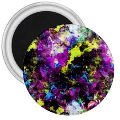 Colour Splash G264 3  Magnets by MedusArt