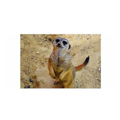 Lovely Meerkat 515p Satin Wrap by ImpressiveMoments