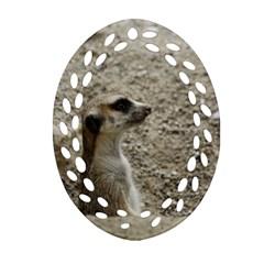 Adorable Meerkat Oval Filigree Ornament (2 Side)  by ImpressiveMoments