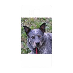 Australian Cattle Dog Blue Samsung Galaxy Alpha Hardshell Back Case by TailWags