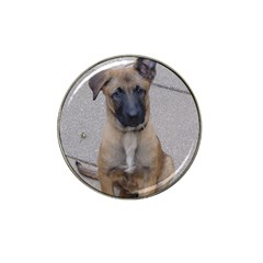 Malinois Puppy Sitting Hat Clip Ball Marker (10 pack) by TailWags
