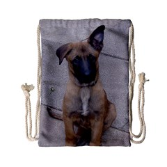 Malinois Puppy Sitting Drawstring Bag (Small) by TailWags