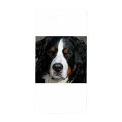 Bernese Mountain Dog Samsung Galaxy Alpha Hardshell Back Case by TailWags