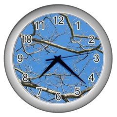 Leafless Tree Branches Against Blue Sky Wall Clocks (silver)  by dflcprints