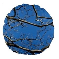 Leafless Tree Branches Against Blue Sky Large 18  Premium Round Cushions by dflcprints