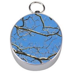Leafless Tree Branches Against Blue Sky Silver Compasses by dflcprints