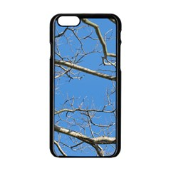 Leafless Tree Branches Against Blue Sky Apple Iphone 6/6s Black Enamel Case by dflcprints
