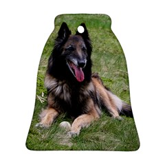 Belgian Tervuren Laying Bell Ornament (2 Sides) by TailWags