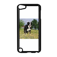Border Collie Full 3 Apple iPod Touch 5 Case (Black) by TailWags