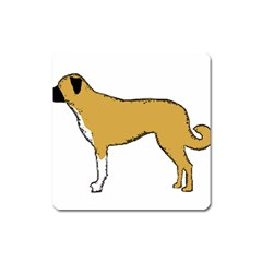 Anatolian Shepherd color silhouette Square Magnet by TailWags