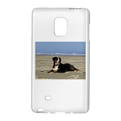Bernese Mountain Dog Laying On Beach Galaxy Note Edge by TailWags