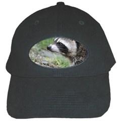 Racoon 1115 Black Cap by MoreColorsinLife