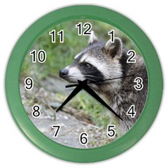 Racoon 1115 Color Wall Clocks by MoreColorsinLife