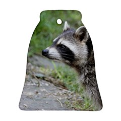 Racoon 1115 Bell Ornament (2 Sides) by MoreColorsinLife