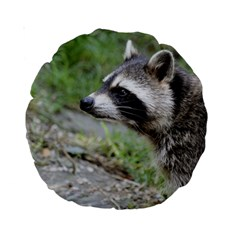 Racoon 1115 Standard 15  Premium Round Cushions by MoreColorsinLife