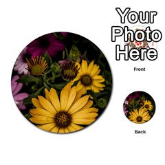 Beautiful Colourful African Daisies  Multi Purpose Cards (round)  by OZMedia