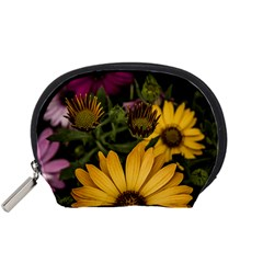 Beautiful Colourful African Daisies  Accessory Pouches (small)  by OZMedia