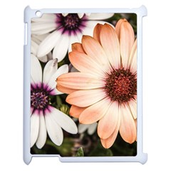 Beautiful Colourful African Daisies Apple Ipad 2 Case (white) by OZMedia