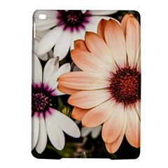 Beautiful Colourful African Daisies Ipad Air 2 Hardshell Cases by OZMedia