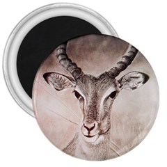 Antelope Horns 3  Magnets by TwoFriendsGallery