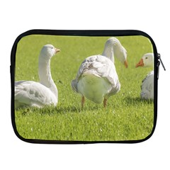 Group Of White Geese Resting On The Grass Apple Ipad 2/3/4 Zipper Cases by dflcprints