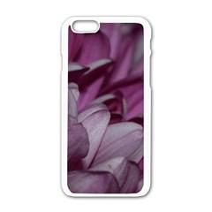 Purple! Apple Iphone 6/6s White Enamel Case by timelessartoncanvas
