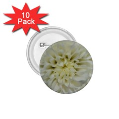 White Flowers 1 75  Buttons (10 Pack) by timelessartoncanvas