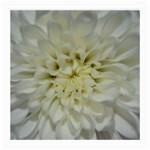 White Flowers Medium Glasses Cloth (2-Side)