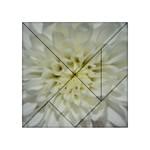 White Flowers Acrylic Tangram Puzzle (4  x 4 )