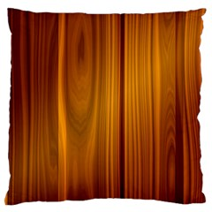 Shiny Striated Panel Large Cushion Cases (two Sides)  by trendistuff