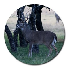Texas Whitetail Round Mousepad by Outdoors