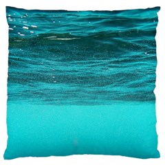 Underwater World Large Cushion Cases (one Side)  by trendistuff