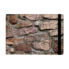 CEMENTED ROCKS iPad Mini 2 Flip Cases by trendistuff